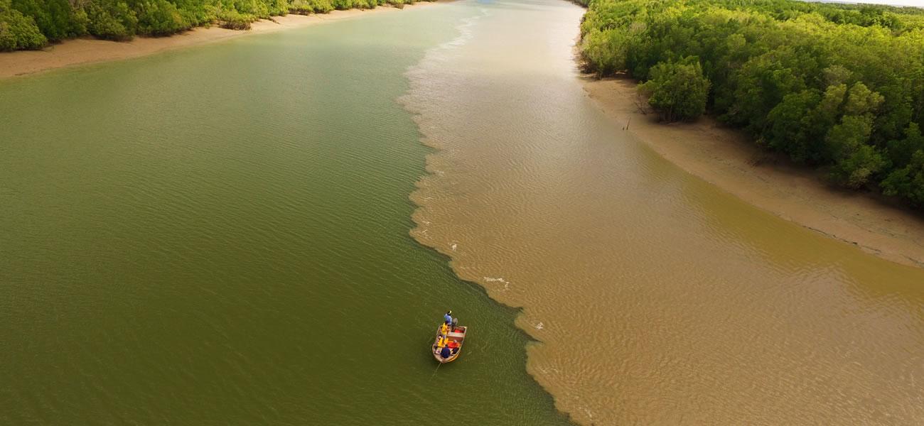Gove Fishing Charters